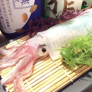 新鮮☆活き鯖、活きイカが名物です!