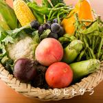 シエル エ ソル - 奈良と栃木から仕入れる、鮮度の高い野菜
