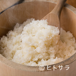 鯖の塩焼き専門店 鯖なのに。 - 合わせる米や味噌は、もの凄い鯖をおいしく食べる為に試行錯誤