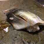 第三春美鮨 - 小鰭 49g 巻き網漁 愛知県豊浜 先週の新子と同じく、一枚付けにて