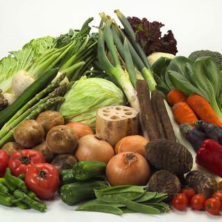 新鮮なお野菜を仕入れております!