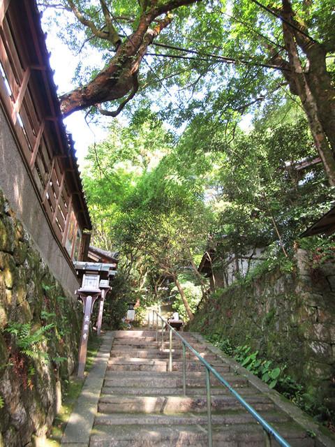 長楽寺 - 石段を登ると(2017.8月上旬)