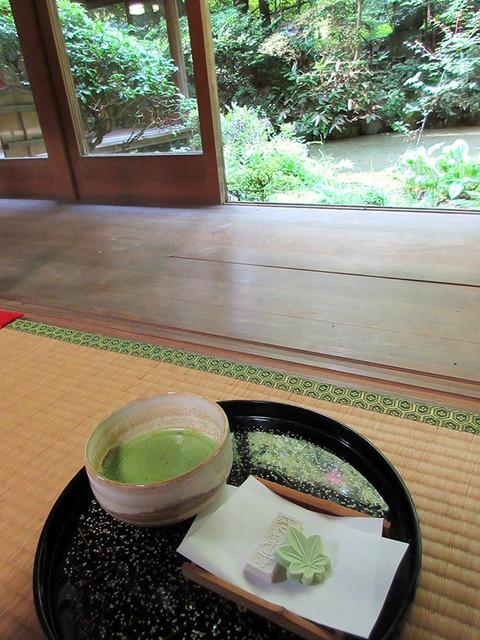 長楽寺 - 庭園を眺め一服