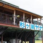 杉ケ瀬ヤナ - 外観