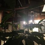 花園スペインバル HEIZO  -