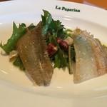 小倉 匠のパスタ ラ・パペリーナ - 笹鰈とタンポポのサラダ