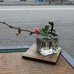 フタマサ御酒堂 - 梅の一厘ざしが飾られていました。