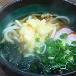 こんぴらうどん 富士 - 料理写真:天ぷらうどん