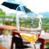 勝沼醸造 - ドリンク写真:アルガーノ・露是