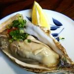 73281037 - 岩牡蠣