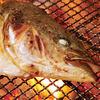 魚のかま塩焼き