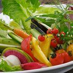 ◇ お野菜 - Vegetables - ◇