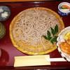 手打蕎麦かとう - 料理写真:田舎そば770円+ミニ野菜天丼250円