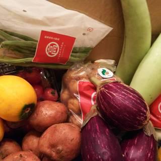 能登島高農園さんの有機野菜