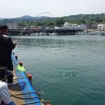 わらべ菜魚洞 - すぐ近くに小田原漁湾