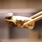 豪龍久保 - 立派な松茸!