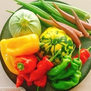 地元の新鮮な食材を使用したお料理をご提供