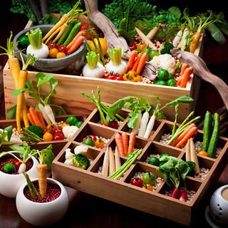 体験型!契約農家直送の新鮮野菜を収穫する農園バーニャカウダ