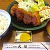 ひれかつの太閤  - 料理写真: