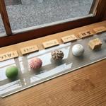萬御菓子誂處 樫舎 - 生菓子