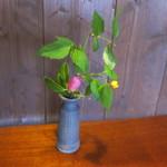 胡蝶庵 仙波 - 飾ってあった花