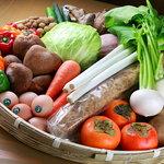 野菜バーる31 - 全国から取り寄せた元気いっぱいのお野菜達