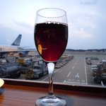 カフェ&バー アビオン - 赤ワイン
