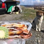 めめちゃんの店 - 料理写真:イカ焼き