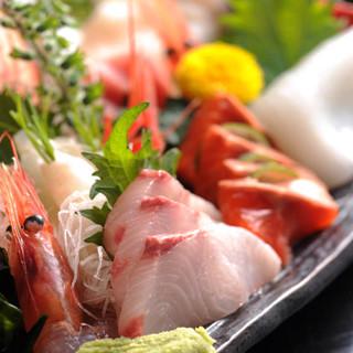 刺身と寿司に自信あり!その秘密は、小田原港の朝獲れ地魚!