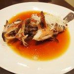 新中国料理 HARAKAWA - ガシラの姿蒸し広東風