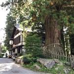 うずら家 - 【2017.9.21】樹齢800年の杉の木の横にある店舗。