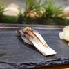 塩竈 しらはた - 料理写真:生サバ