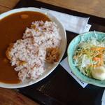 夢市茶屋 - 古代米カレーセット(860円)