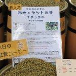 焙煎香房 シマノ - 2011/4/10 <エルサルバドル> ホセ・アントニオ