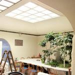 ハシゴカフェ キョウト - 店内の一角。小さな緑(元銭湯をリノベ)