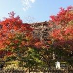 建仁寺 祇園 丸山 - 清水寺