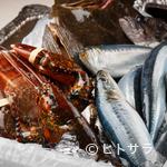 シェヌー - 市場で目利きして買い付ける鮮魚