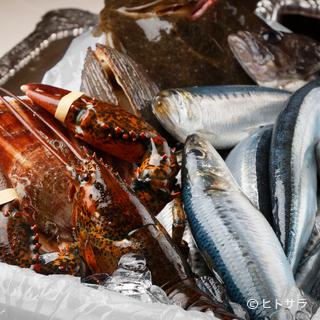 市場で目利きして買い付ける鮮魚