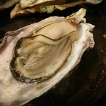 魚介ビストロ sasaya - ぷっくぷくの蒸牡蠣