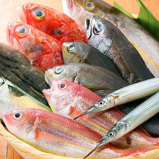 産地直送!海の幸ならではの美食料理