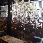 六本木 福鮨 - 粋な活け込み
