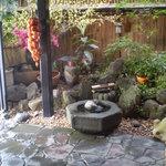 六本木 福鮨 - 素敵なお庭です