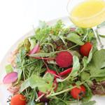 旬を彩る季節野菜のサラダ レギュラー