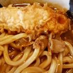 74258964 - ささみ天・脂カス・美味しい麺