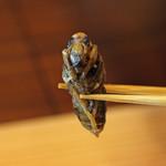 柚木元 - オオスズメバチのサナギ