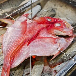築地の仲買人が織り成す究極の海鮮料理!