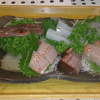 漁師/買付け新鮮・格安・天然刺身《1人前5品盛り980円》
