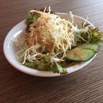 ナンハウス カトマンズ - セットのサラダ。しっかり量あり。