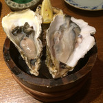 四十八漁場 - 北海道 浜中産 生牡蠣