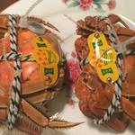 74403903 - 今日一の人生初上海蟹!